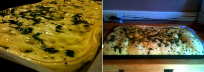 focaccia really rising.jpg